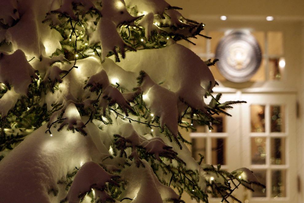 18. Снег лежит на украшенной елке перед Западным крылом Белого дома в Вашингтоне 19 декабря 2009 года. (AP Photo/Alex Brandon)