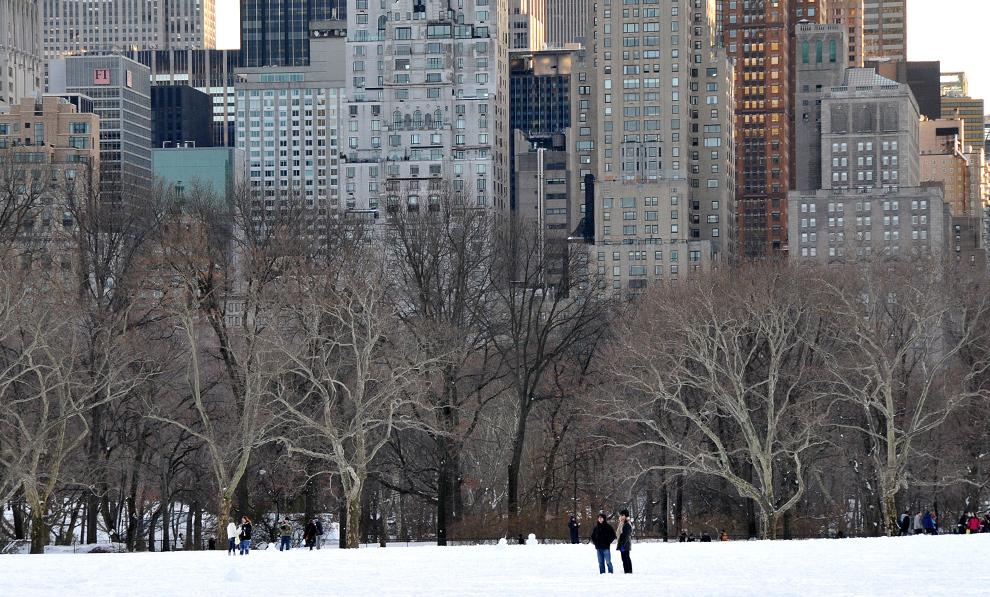 24. Жители и гости Нью-Йорка любуются снежным парком 21 декабря 2009 года. (Alex Ogle/AFP/Getty Images)
