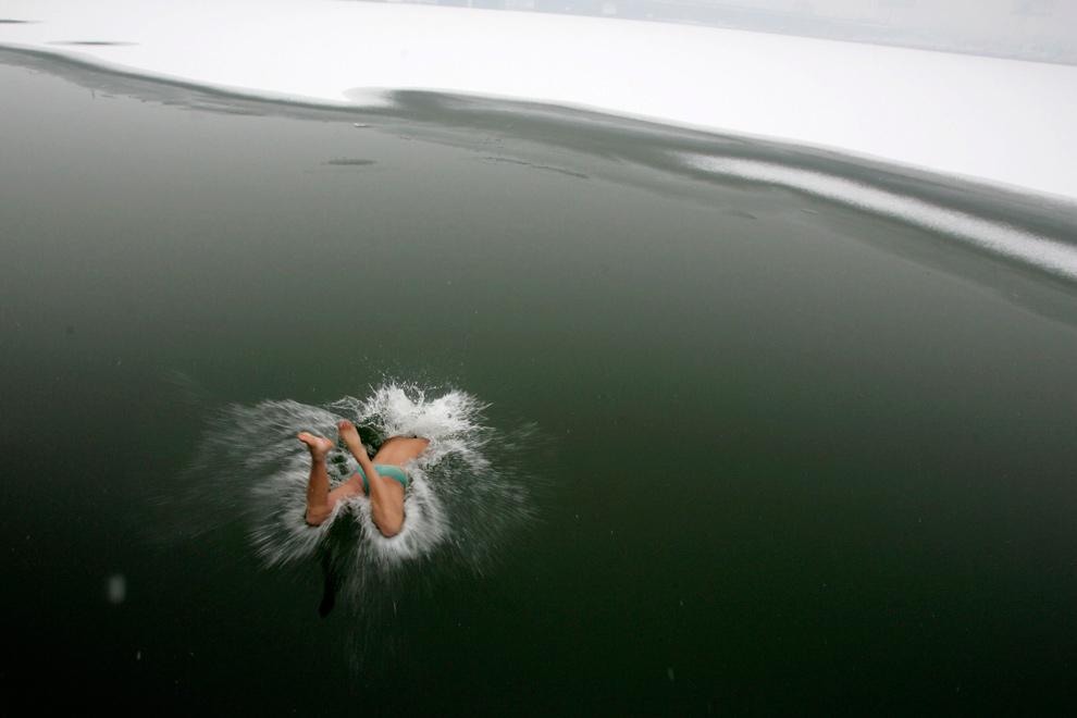34. Морж ныряет в ледяные воды на заледенелой реке в Тайюань, провинция Шаньси, Китай, 7 декабря 2009 года. (REUTERS/Stringer)