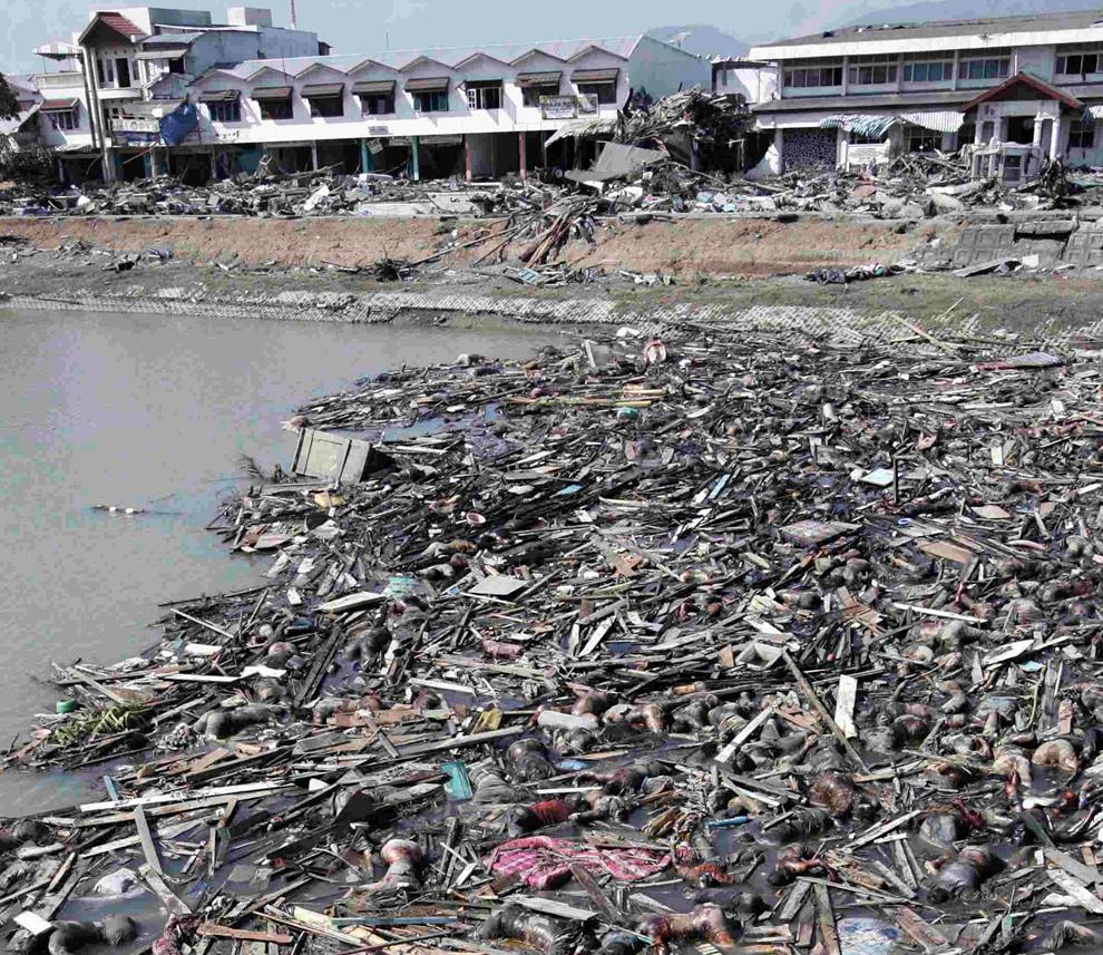 10. Тела жертв цунами лежат в воде недалеко от порта Банда Ачеха 29 декабря 2004 года. (REUTERS/Darren Whiteside/Beawiharta)