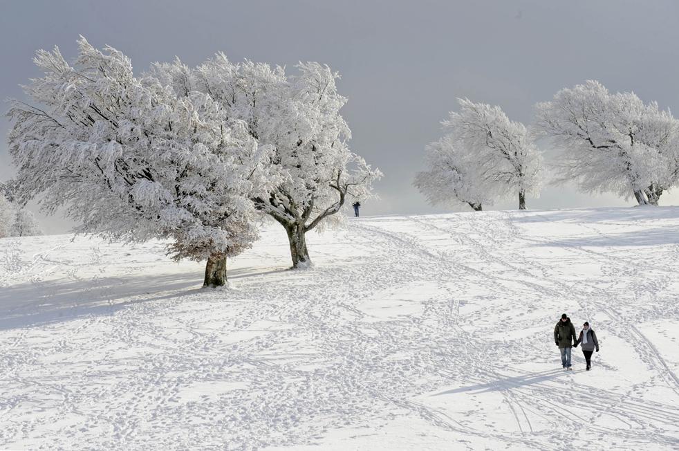 1. Парочка идет мимо покрытых снегом деревьев на горе Шауинслэнд, в Черном Лесу (Шварцвальде) в Германии 14 декабря. В горах открывается отличный вид на «белое Рождество». (AP/Winfried Rothermel)