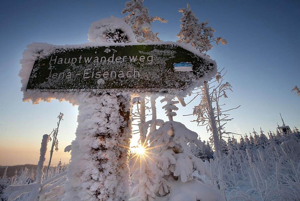 7. Восход над туристической тропой недалеко от Ильменау, Германия. (Michael Reichel/European Pressphoto Agency)