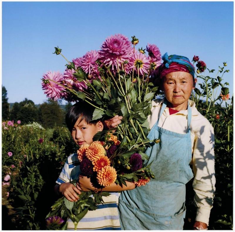 2. Конг Лор и Као Ли Ча собирают цветы в поле, метко названном Карнейшен (по англи. – гвоздика) в Вашингтоне. (Anna Mia Davidson / Character Project)