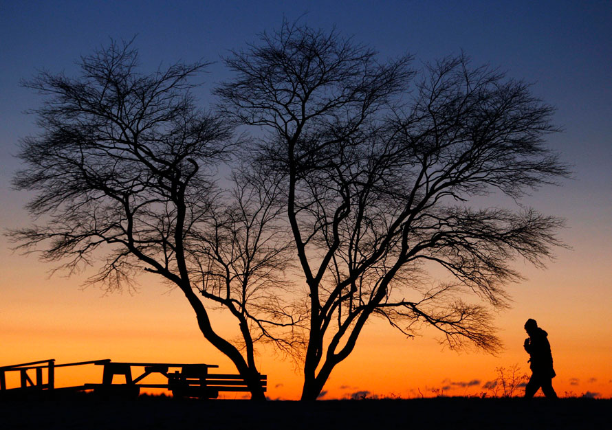 6. Первые лучи солнца окрашивают восточное небо, пока Каролин Санфорд идет по 15-градусному морозу в Фрипорте, штат Мэн. (AP Photo/Robert F. Bukaty)