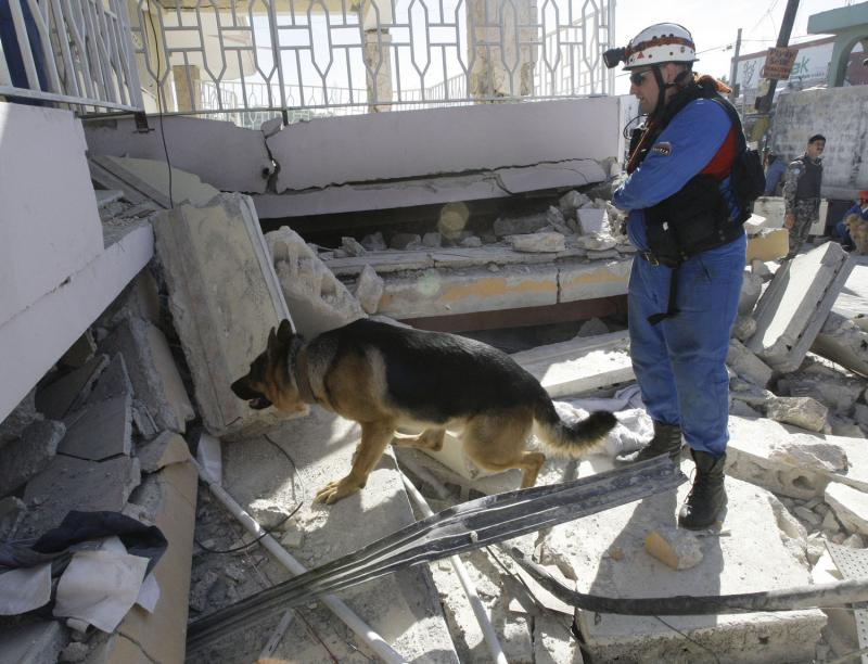 9. Российские спасатели с собаками ищут жертв землетрясения на руинах дома в Порт-о-Пренс 16 января 2010 года. (UPI/Anatoli Zhdanov)