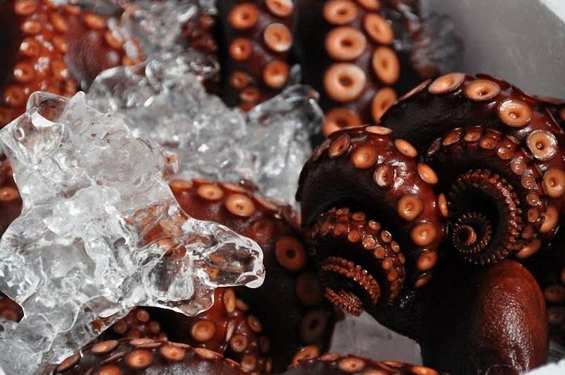 9) осьминоги...