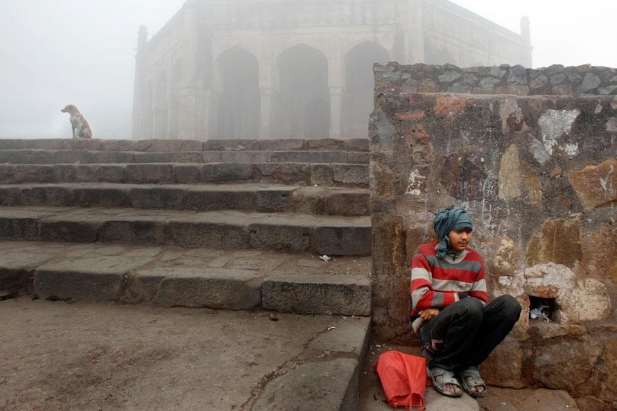 11. Мужчина и собака сидят на ступеньках к историческому памятнику, окруженному утренним туманом, в Нью-Дели. (AP Photo/Manish Swarup)