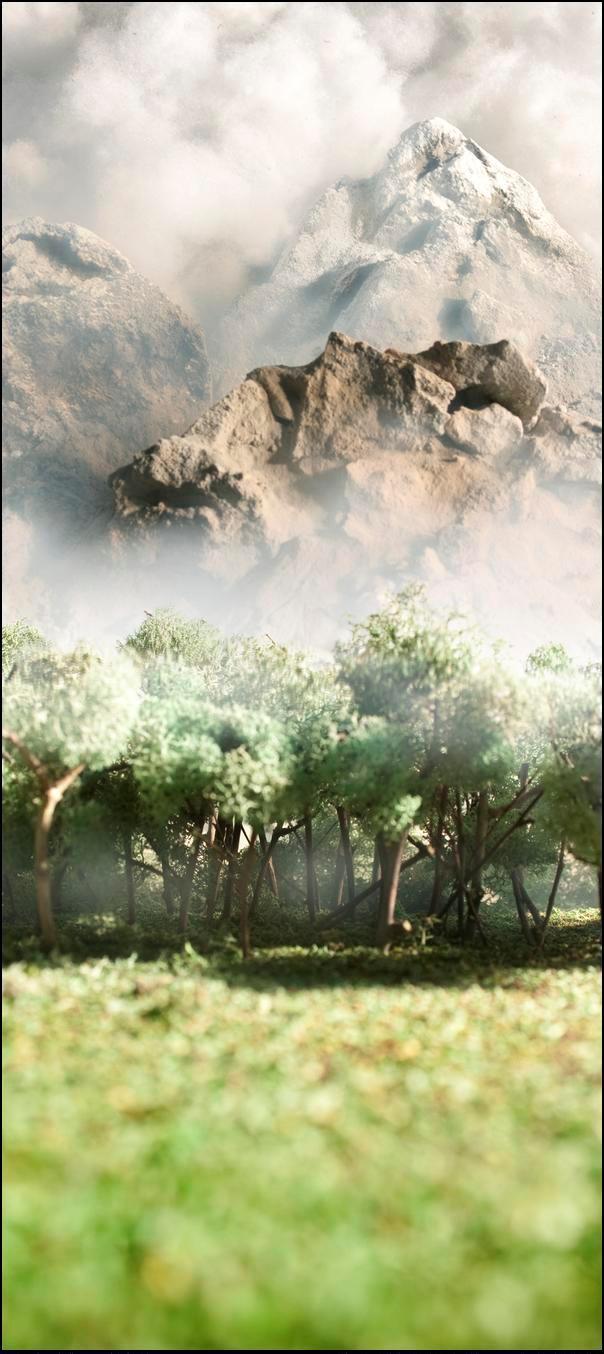 13) Горы и лес.