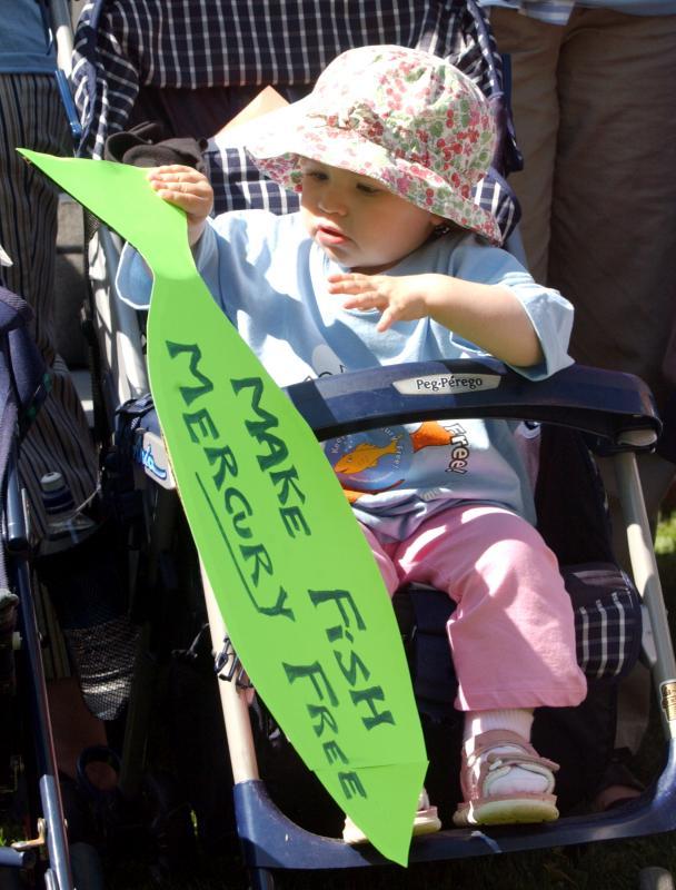 15. Юные демонстранты присоединились к протесту против ртутного загрязнения, вмешавшегося в пищевую цепочку, угрожая детям, у Белого дома 6 мая 2004 года. (UPI Photo/Roger L. Wollenberg)