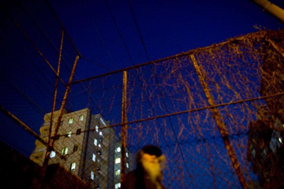 19. Мужчина идет в город 17 января 2009 года в Осаке. (Shiho Fukada)