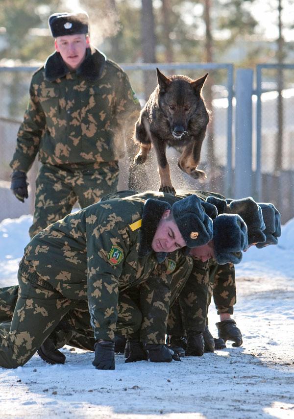 23) Служебная собака перепрыгивает через солдат во время тренировки в городе Сморгонь, Республика Беларусь. (AP Photo/ Anton Motolko)
