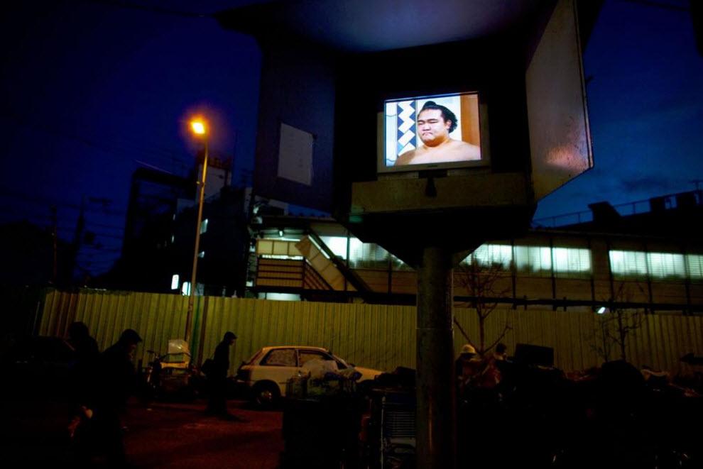 25. Борец сумо в телевизоре в парке, где спят много бездомных, 15 января 2009 года в Осаке. (Shiho Fukada)