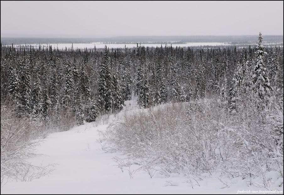 46) Переехали Печору. Это, кстати, она, на заднем плане. Длина ледовой переправы - километр с лишним.