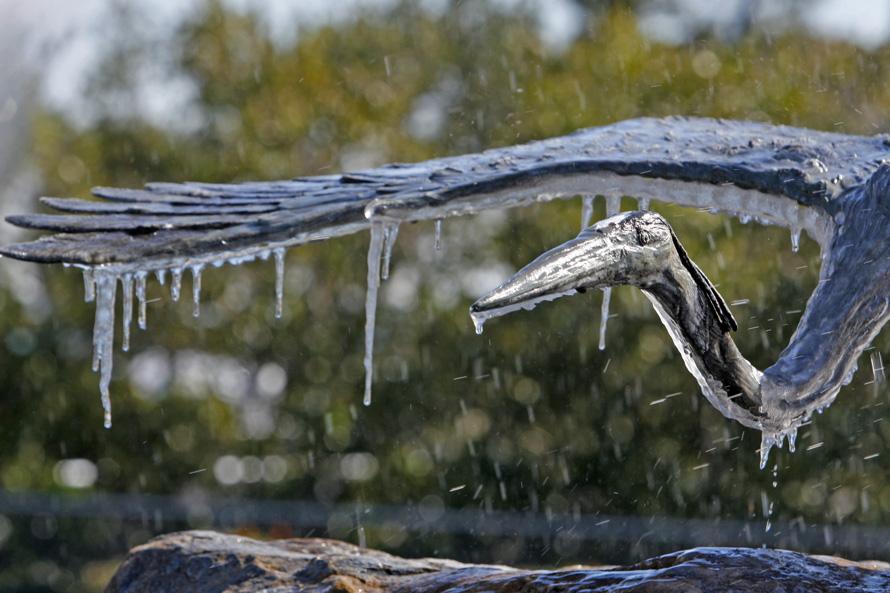 1) Покрытая льдом металлическая птица - деталь фонтана, расположенного у морского вокзала в Сейти Харбор, во Флориде. (JIM DAMASKE, Times)