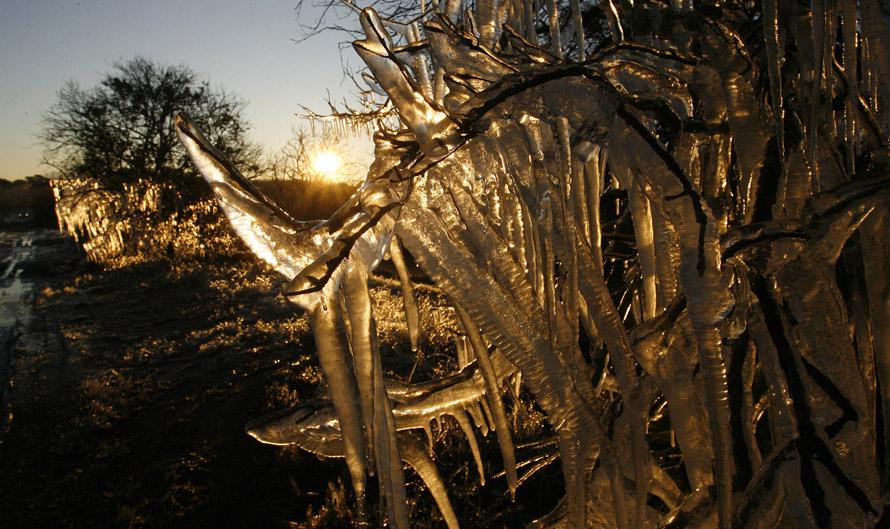 5) Жители солнечной Флориды жалуются на то, что не привыкли к холоду, обрушившемуся на штат. В последний раз подобное похолодание во Флориде наблюдалось 11 января 1927 года. (SKIP O'ROURKE, Times)