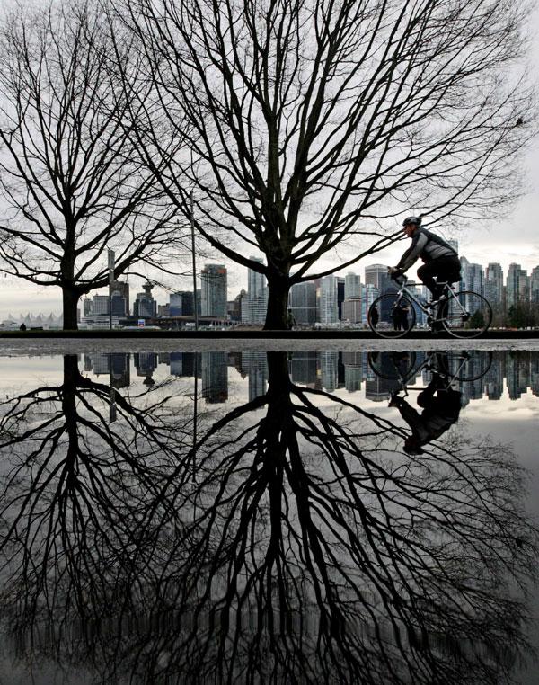 1) Велосипедист едет через Стэнли Парк в Ванкувере, Британская Колумбия. (AP Photo/Darryl Dyck, Canadian Press)
