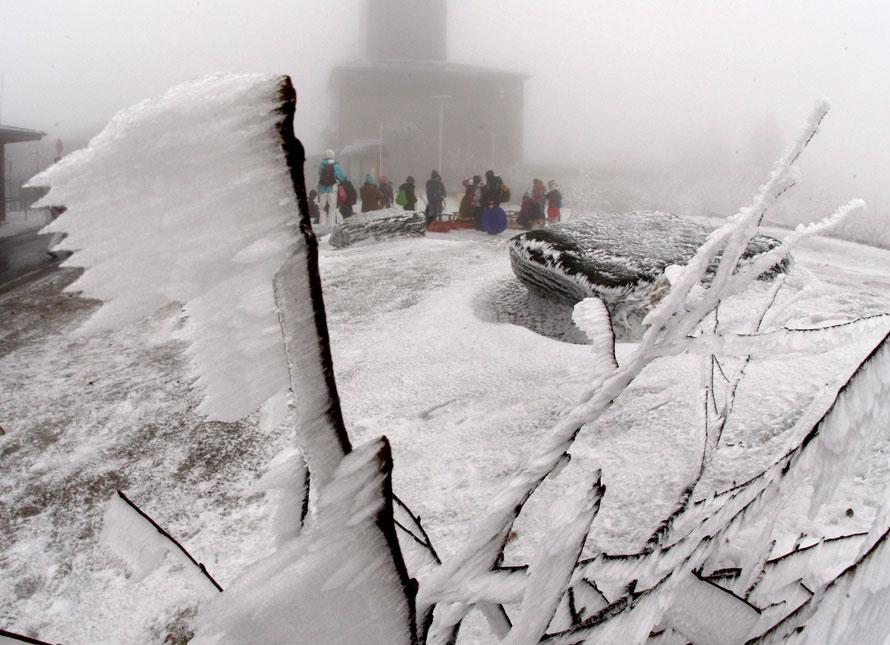 8. Замерзшее дерево на вершине горы Фельдберг, недалеко от Франкфурта. (AP Photo/Michael Probst)