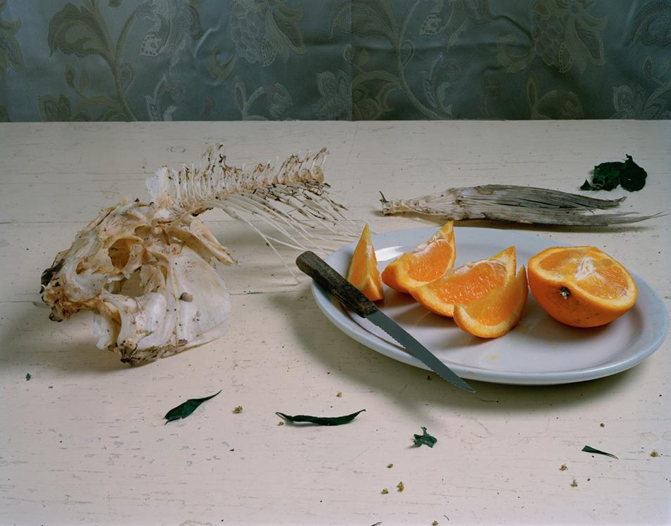 6) Натюрморт с рыбой и ломтиками апельсина.(© Justine Reyes)