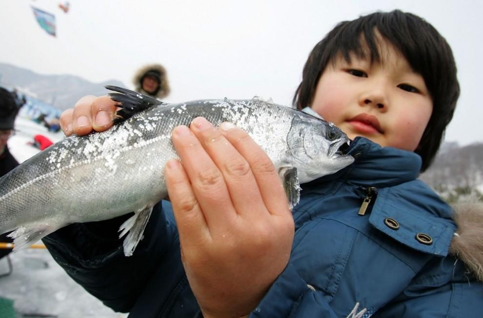 6) Это не только красивая рыба, но и вкусная почти со сладким вкусом. (Chung Sung-Jun/Getty Images)