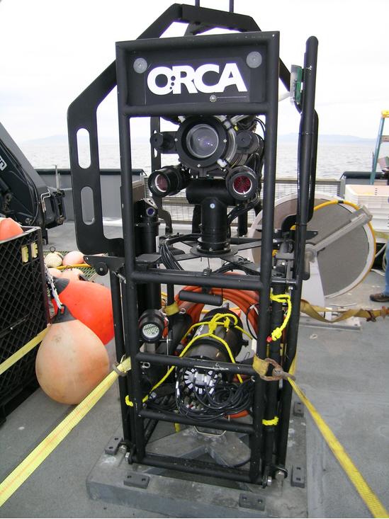 4) Но если уж вы всерьез решили сделать пару качественных снимков невероятных, похожих на инопланетян  чудищ, то вовсе не обязательно отправлять камеру в открытый космос: подумайте глубже – да-да, глубже. Система подводного наблюдения  ORCA разработана для того, чтобы фотографировать светящихся обитателей морских пучин, живущих на глубине ниже километра. (John Herrman)