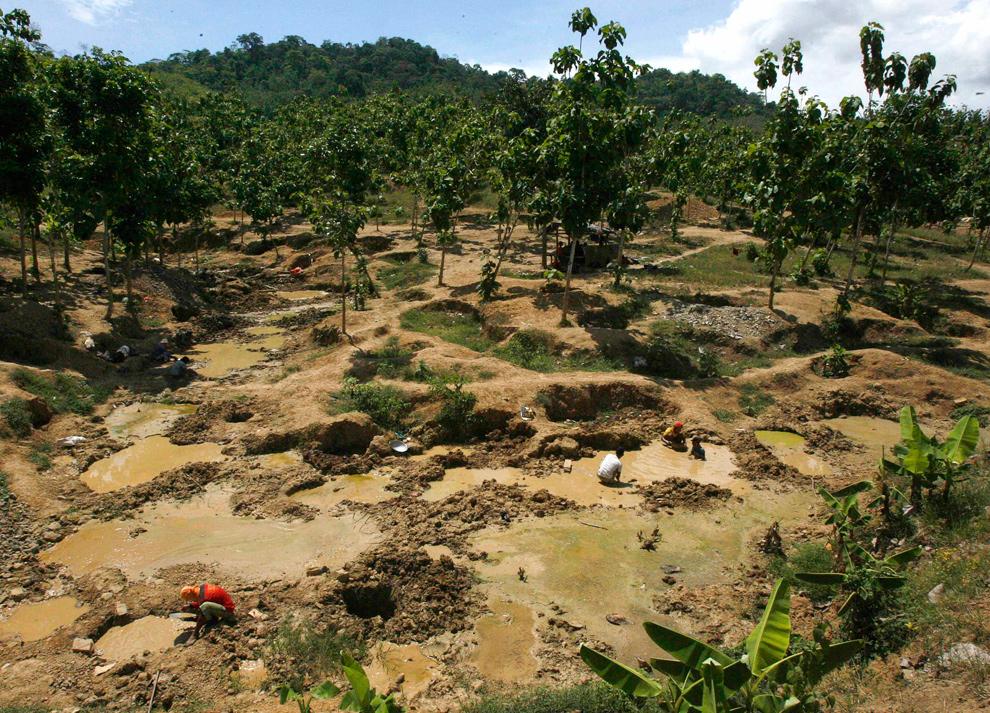 27. Нелегальные золотоискатели ищут золото в горах Тумпанг Питу в Бануванги, Восточная Ява, Индонезия, 21 ноября 2009 года. Здешняя шахта работает с июня 2009 года, и местные жители уже начали протестовать, так как отходы от шахты загрязняют окружающую среду. (REUTERS/Sigit Pamungkas)