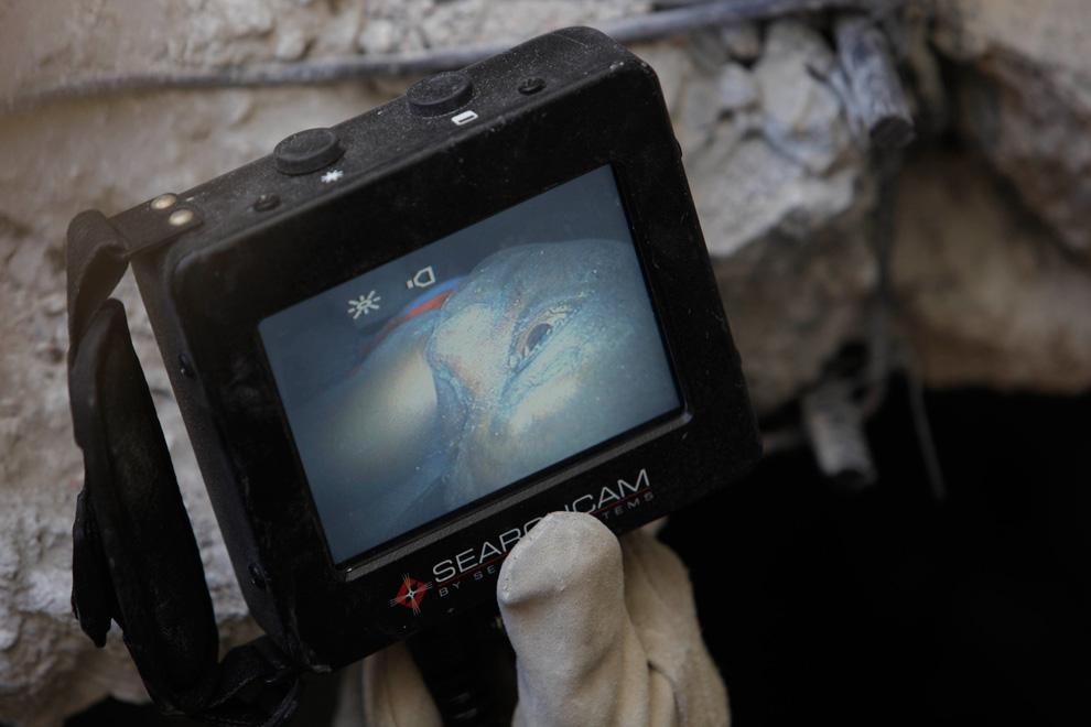 9. Американский спасатель Сэм Грей держит монитор, в котором видна 28-летняя Джин Луи Сайнте Халайн – живая и в сознании – погребена под обломками университета Порт-о-Пренс 16 января 2010 года. (AP Photo/Gregory Bull)