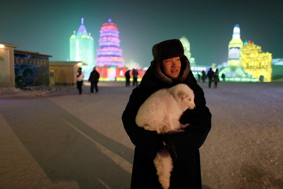 24. Женщина ждет туристов, желающих сфотографироваться с ее лисой, в Харбине 3 января 2010 года. (REUTERS/Aly Song)
