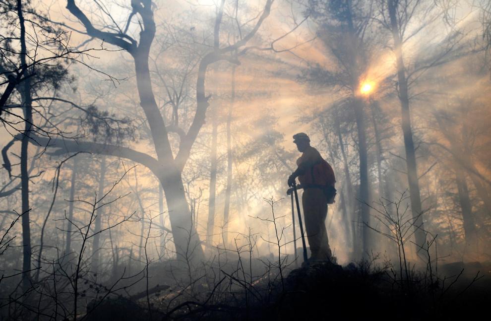 22. Член пожарной команды смотрит, чтобы огонь не пересек отведенную линию и не перекинулся на другую сторону Кингс Пиннэкл в парке Краудерс в Гастонии, штат Северная Каролина, 6 января 2010 года. Управляющие парком сожгли более 202 гектаров леса недалеко от линии округа Гастон и Кливленд, чтобы очистить заторы в лесу, вызванные опавшими листьями и сваленными деревьями, и чтобы помочь определенным видам растений, таким как карликовый дуб, которым для размножения нужен огонь. (AP Photo/The Charlotte Observer, John D. Simmons)