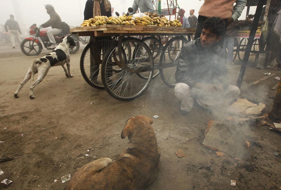 15. Мальчик греется у огня холодным туманным утром в Ноиде, пригороде Нью-Дели, 6 января. Десятки людей погибли в результате морозов, прошедших по северной Индии. (AP / Saurabh Das)