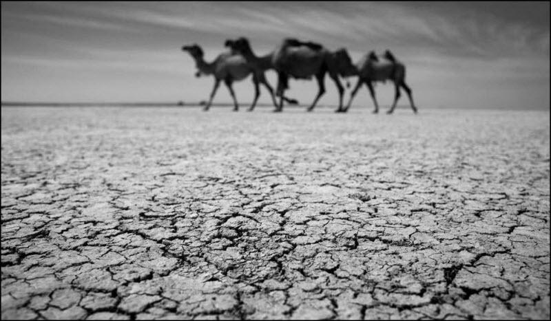 Real Dead Sea: Aral
