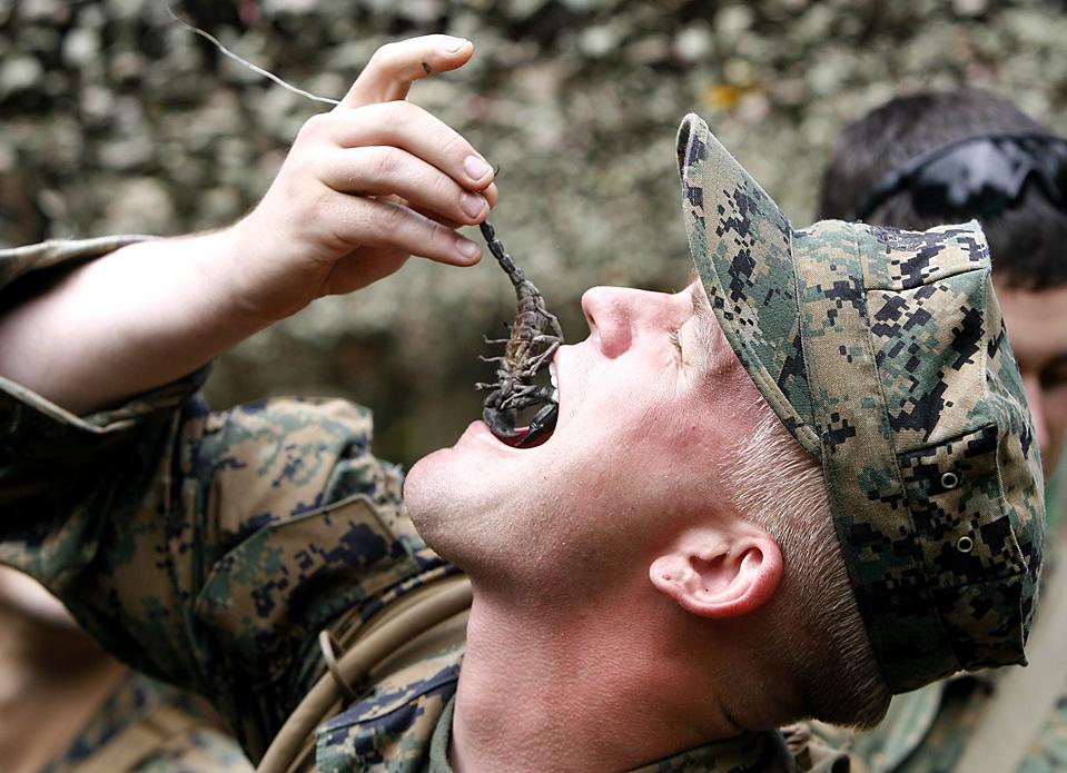 4. Морпех США ест скорпиона во время тренировки на выживание в джунглях в тайской провинции Чон Бури. Более 10 000 солдат из шести стран приняли участие в совместных военных учениях «Cobra Gold 2010». (Chaiwat Subprasom/Reuters)
