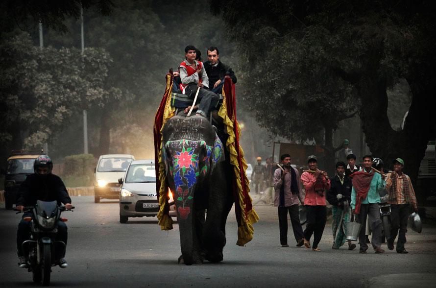 2. Молодожены едут на слоне по дороге в Нью-Дели. Слонов часто можно увидеть на занятых улицах столицы Индии, их используют на свадьбах, различных мероприятиях, а также для работы. (AP Photo/Kevin Frayer)