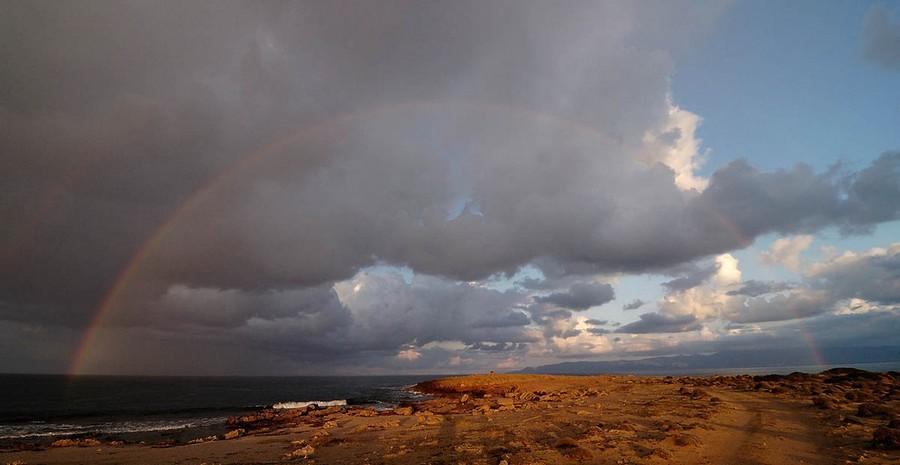 04) Кипр, начало ферваля 2009. После небольшого дождя.
