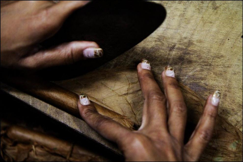 06) Cohiba Estupendo cigar. Табак, предназначенный для сигар марки Сohiba, выращивают на плантациях в районе Вуэльта Абахо провинции Пинар дель Рио (Pinar Del Ruo).