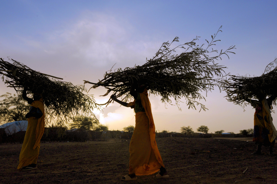 6.  Chad timur: