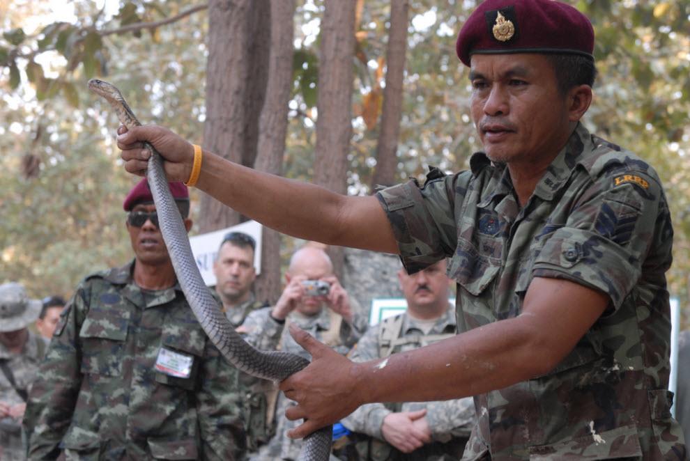 1022 Cobra latihan militer Emas
