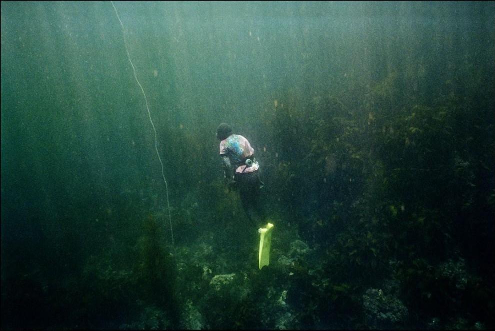 11) Эта женщина-ныряльщица ищет морских ежей.
