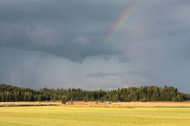 11) Финляндия, август 2009.