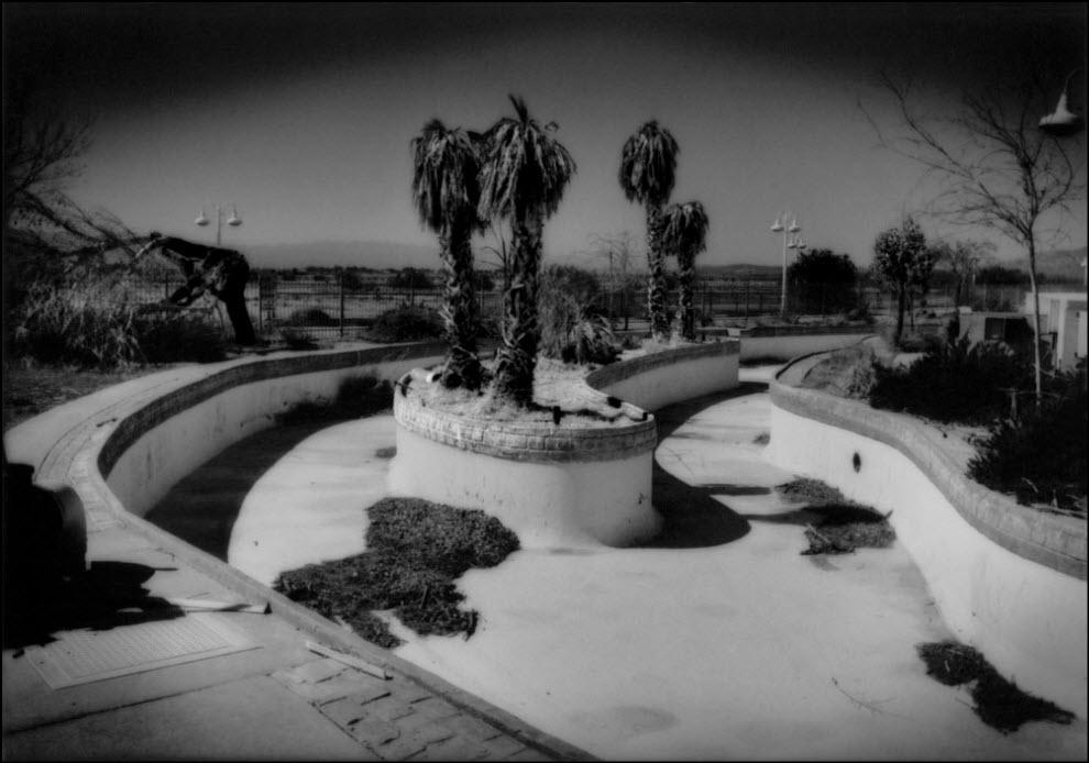 13) Мертвые пальмы в заброшенном водном парке, пустыня Мохав, Калифорния.