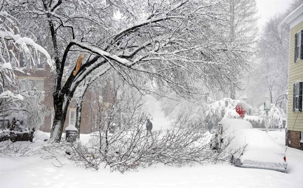 16. Сломанная ветка дерева блокировала улицу в Александрии, штат Вирджиния, 6 февраля. Сильная буря прошлась по среднеатлантическим штатам США в субботу, сразу же вызвав проблемы на дорогах. (Cliff Owen / AP)