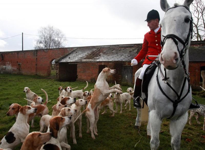 Охотничий клуб в Англии