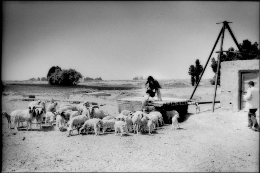 18) Деревня во Внутренней Монголии.