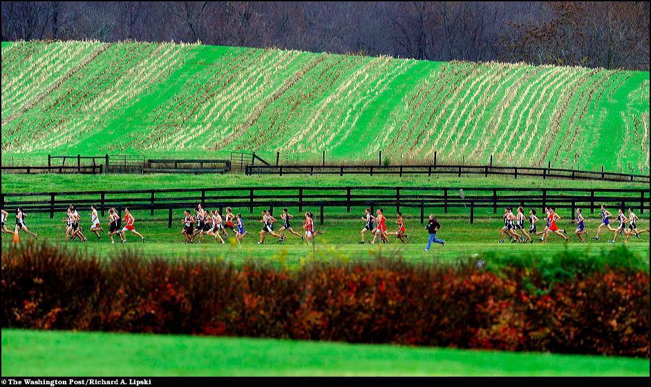 29) Репортаж о забеге школьников штата Вирджиния в ежегодном кроссе.