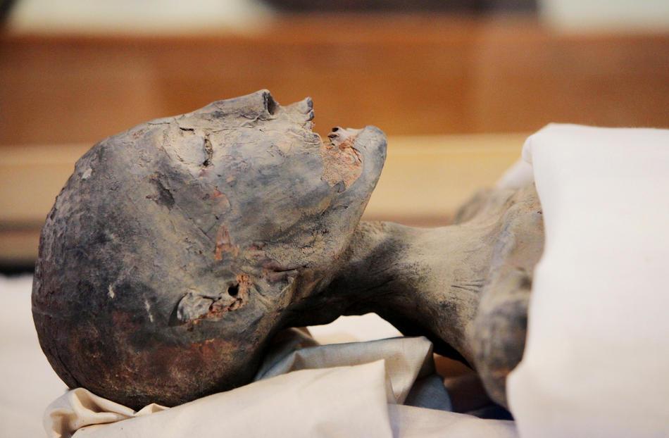 30. Мумия матери Тутанхамона в стеклянном ящике во время пресс-конференции в египетском музее 17 февраля 2010 года. (AP Photo/Discovery Channel, Shawn Baldwin)