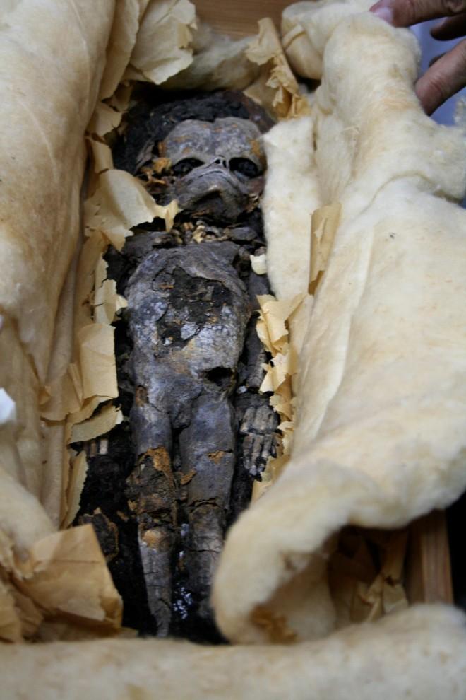 32. Одна из двух мумифицированных эмбрионов, найденных в гробнице фараона Тутанхамона в 1922 году. Египетские ученые проводили тесты ДНК, чтобы узнать, были ли эти зародыши детьми юного фараона. (AP Photo/Supreme Council of Antiquities)