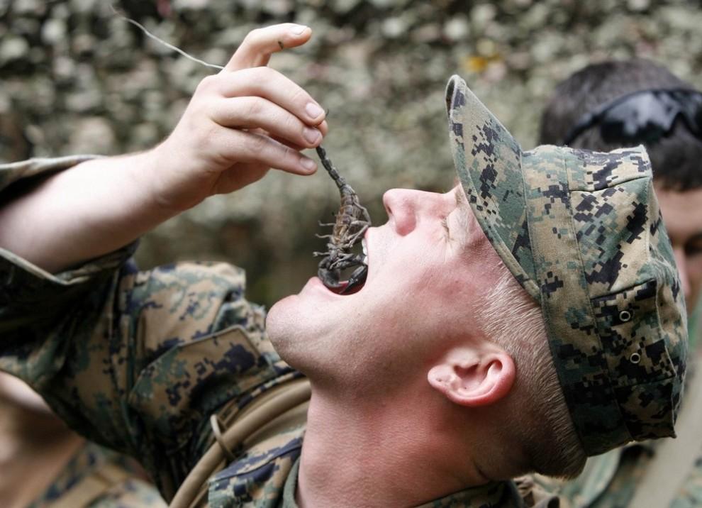 Военные учения CobraGold