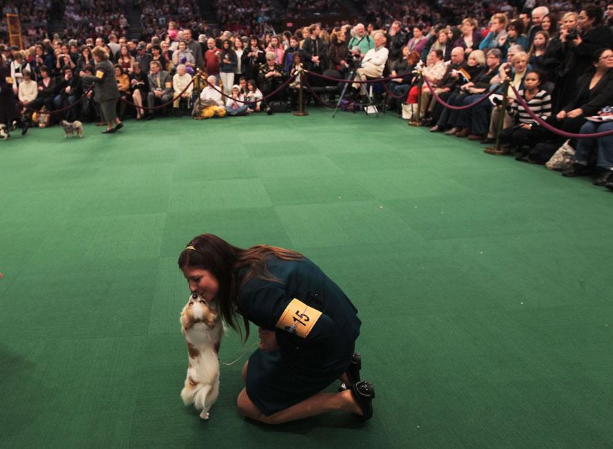 14) Хозяйка целует свою собачку на выставке в Нью-Йорке. (Photo by Chris Hondros/Getty Images)