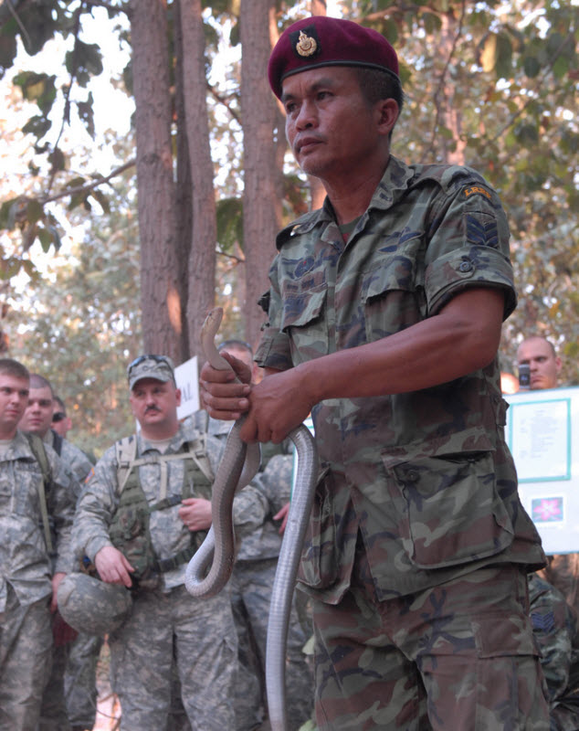 811 latihan militer Cobra Gold