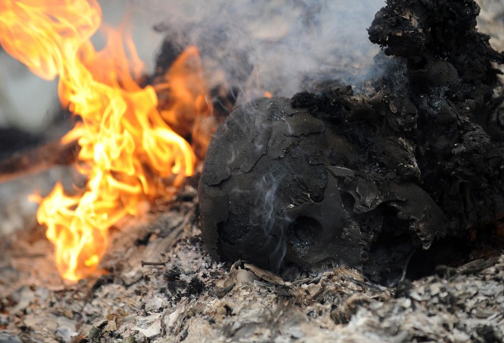 30. Череп жертвы, который вытащили из-под обломков здания, в центре Порт-о-Пренс 26 января 2010 года. (STAN HONDA/AFP/Getty Images)