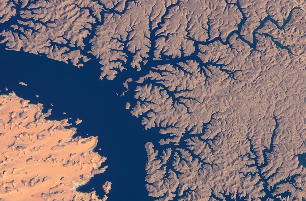 3710 Всемирный день водных ресурсов (Часть 2)